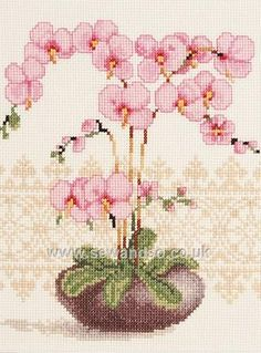 Thrilling Designing Your Own Cross Stitch Embroidery Patterns Ideas. Exhilarating Designing Your Own Cross Stitch Embroidery Patterns Ideas. Cross Stitch Kits, Cross Stitch Charts, Cross Stitch Designs, Cross Stitch Patterns, Hardanger Embroidery, Cross Stitch Embroidery, Hand Embroidery, Needlepoint Patterns, Embroidery Patterns