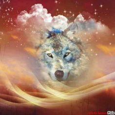 .Wolf Spirit