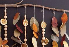 Móvil con hojas y frutas, Comprender la naturaleza.