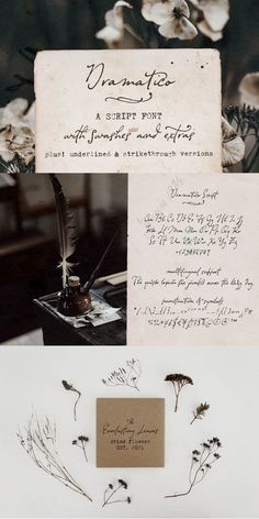 Dramatico is a script font family inspired by vintage handwritten postcards and notes. Perfect for any design that needs a vintage calligraphy look, Dramatico was handmade using a real dip pen and ink. Use it in signatures and logos, notes and quotes, social media posts, and branding and packaging. #handwriting #font #typography Creative Design, Web Design, Graphic Design, Dip Pen, Brush Font, Script, Photoshop Brushes, Font Family, Lower Case Letters