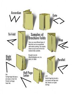 Tri fold Brochure Design Photo