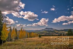 Fall View From Snowbowl: http://fineartamerica.com/profiles/robert-bales/shop/all/all/all