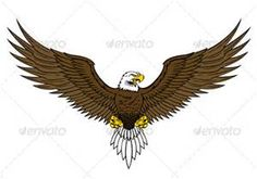 American Eagle Crest - Bing Images