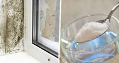 Complici umidità e scarsa ventilazione, la muffa si sviluppa spesso in cucina, bagno e altre [Leggi Tutto...]