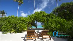 Alpha Maldives is a tour operator specialising in luxury Maldives holidays and honeymoon packages, offering a wide range of resorts, offering superb all inc Maldives Luxury Resorts, Maldives Honeymoon, Maldives Holidays, Honeymoon Packages, Luxury Holidays, Tour Operator, International Airport, Alcove, Villa