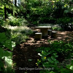 From one of my garden design projects Oldham in Manchester. Transformation of an unloved space into an enchanted forest garden, swipe for before picture. Landscape Architecture, Landscape Design, Garden Design, Forest Garden, Enchanted, Design Projects, Manchester, Space, Plants