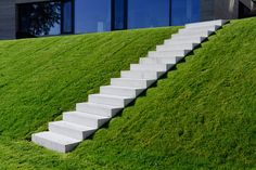 stairs down verdant slopes