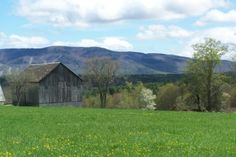 art vermont landscapes   Artist Bio and Statement - Nancy Calicchio Vermont Landscapes