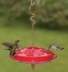 Attract hummingbirds to your garden with this feeder. This is the bestselling hummingbird feeder in North America!