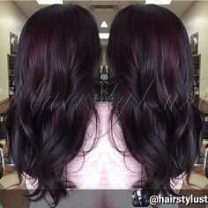 Image Result For L Oreal Technique Chroma True Reds Directions