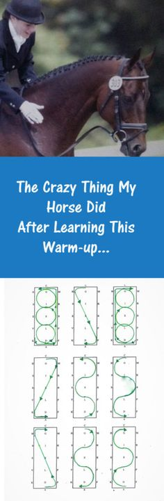 My horse did something unexpected, but crazy cool after he learned the warm up I'm sharing today. I'll tell you all about that in a little bit. WHAT'S YOUR WARM-UP PLAN? This post contains affiliate links, see my disclosure here. Horse Riding Tips, Horse Tips, My Horse, Horses, Crazy Horse, Dressage, Horse Braiding, Horseback Riding Lessons, Horse Exercises