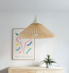 Amazing light fixture