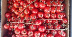 Gemüse Anbauen Ohne Garten: Diese Gemüse Kannst Du Auch In Der Wohnung  Ziehen
