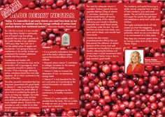 What the experts say about the magic that is The Aloe Berry Nectar. #AloeBerryNectar  #vitamins #cranberry #cranberries #apple #aloeveragel #nutrition #natrualhealth #minerials #antioxidants #aminoacids #potassium £20.80