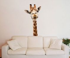 Bring some wild life indoors. No, it need not be a tiger. You can do with this Giraffe Wall Sticker instead.