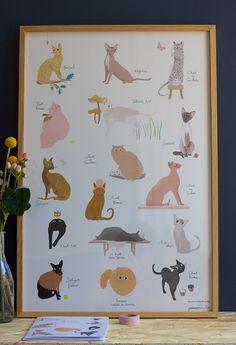 Poster CHATS - Tinou Le Joly Sénoville pour Poisson Bulle