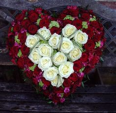 Red and white rose heart