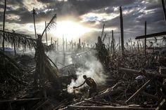 Taifun Haiyan wütete auf den Philippinen (Archiv): Schlimmste Naturkatastrophe 2013