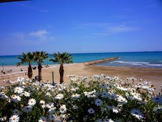 Under the radar European cities to visit by rail in 2014 - Benicassim, Spain
