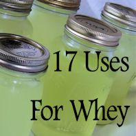 17 Uses For Whey. This will come in very handy when I make yogurt. I like my yogurt thick and don't want the whey to go to waste.
