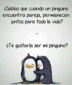 Mi pinguinita! Asi te voy a decir de cariño.