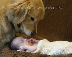 Baby with Dog...when I have a baby, I want a picture like this!