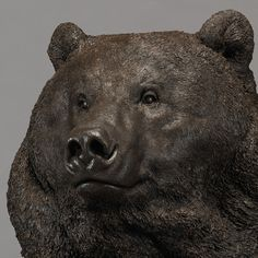 Kodiak Brown Bear (Indomitable - Head Study)
