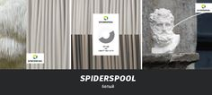 archventil_spiderspool_identity_color (7)