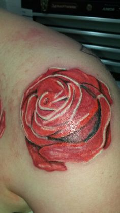 Rose 2 of the sleeve