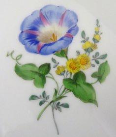 Meissen Teller, Neumarseille , Blumen Dekor, Durchmesser =15,5 cm, #6 | eBay