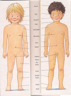 Begin jong met het vertellen over het waarde van het lichaam