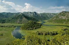 Skadarsko jezero- Montenegro