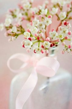 """""""How sweet is this simple bouquet. My Flower, Fresh Flowers, Spring Flowers, Beautiful Flowers, Spring Blooms, Tiny Flowers, Flower Spray, Pastel Flowers, Deco Floral"""