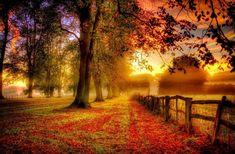Fall Foliage Photo Download Free.