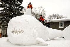 Trevor, Connor, and Austin Bartz play with their 16 foot high snow shark in the front yard of their New Brighton, Minnesota. It took the brothers around 95 hours of work to build the icy creature using snow gathered from houses in their neighborhood Snow Sculptures, Sculpture Ideas, Snow Art, Charlie Sheen, New Brighton, Porno, Snow And Ice, Winter Fun, Winter Snow