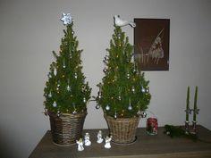 Nogmaals de kerstboompjes maar nu versierd.