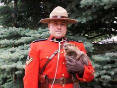 The contest for the most Canadian picture ever is officially over. A Mountie in Saskatchewan took a photo with a baby beaver, and it basically belongs on Canadian passports forevermore. Canadian Memes, Canadian Things, I Am Canadian, Canadian History, Canadian Humour, Canada 150, Visit Canada, Justin Trudeau, Puppies