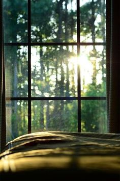 1. Morning sunlight creeps into Amelia's bedroom window. She sits up against her bedframe, hugging her knees.