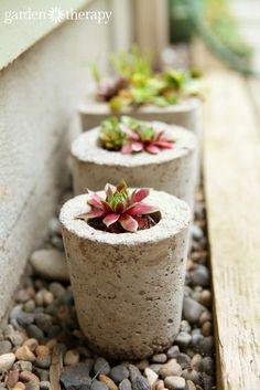 DIY concrete planters, these also look like a great way to make indoor cement planters