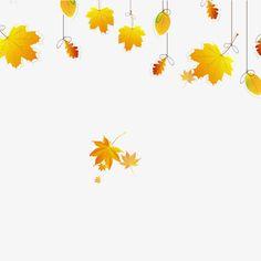 가을,가을,단풍,나뭇잎,낙엽,가을,가을,단풍,나뭇잎,낙엽,잎,단풍,황금빛,생동감,날리우다