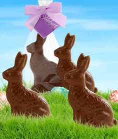 What's more traditional for Easter than these hand crafted solid milk chocolate bunnies? Ready to hop from the Hebert Candies® bunny patch to become the main attraction in your child's Easter basket or for anyone hopping by this Easter, these yummy bunnies won't last long once their spotted!