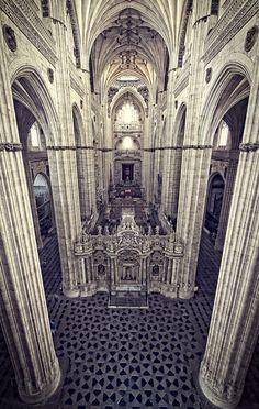 Catedral Nueva de Salamanca by Javier Serrano / https://500px.com/photo/29690381/catedral-de-salamanca-by-brownandbrown
