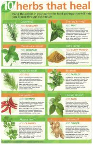 Healing Herbs for Women - Natural Ways to Heal