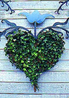"""Outdoor """"rooms"""" in the garden are envlivened by living ornament, such as this heart-shaped ivy trained on wire and moss."""