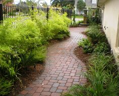 This picture shows a side yard treatment by Vista Landscaping in New Orleans. In this small area bordered by a street, they were able to add a fountain, a pavestone walkway, a screen of bamboo on the iron fence, and various shrubs and perennials to make a totally lovely and easy to care for area out of what would have ordinarily been an empty green space.