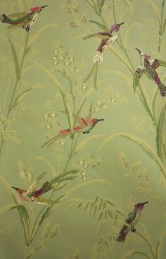 Augustine Wallpaper A printed wallpaper on a olive green background featuring colourful birds amongst  wildflowers and plants.