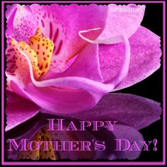 To every woman who has ever nurtured and loved, I wish you a Happy Mother's Day!