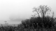 16.12.2016: From the Winter's Fog by Suensyan on DeviantArt