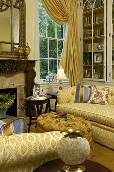 Arts Council Showhouse Library 3 - traditional - living room - dc metro - Paula Grace Designs, Inc.
