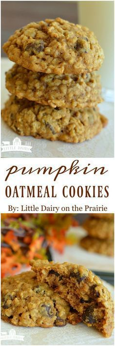 Chocolate Chip Cookies with Oatmeal Pumpkin Oatmeal Cookies are soft and filled with cinnamon and chocolate chips!Pumpkin Oatmeal Cookies are soft and filled with cinnamon and chocolate chips! Fall Desserts, Just Desserts, Delicious Desserts, Dessert Recipes, Yummy Food, Tasty, Cake Recipes, Pumpkin Oatmeal Cookies, Oatmeal Chocolate Chip Cookies